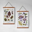 Image of WILD FOOD 5 & 6 PRINTS