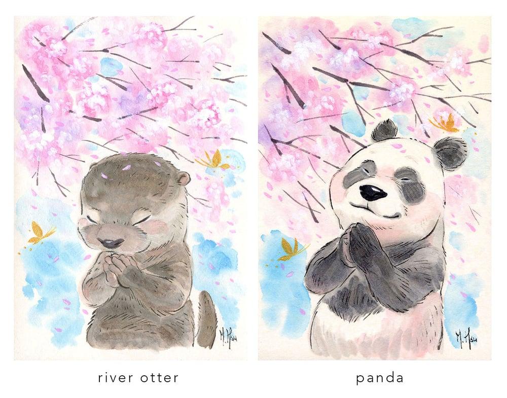 "Image of Sakura Wishes - 5 x 7"" Prints"