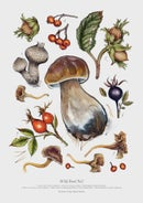 Image of WILD FOOD Collection (ALL the prints 1-6)