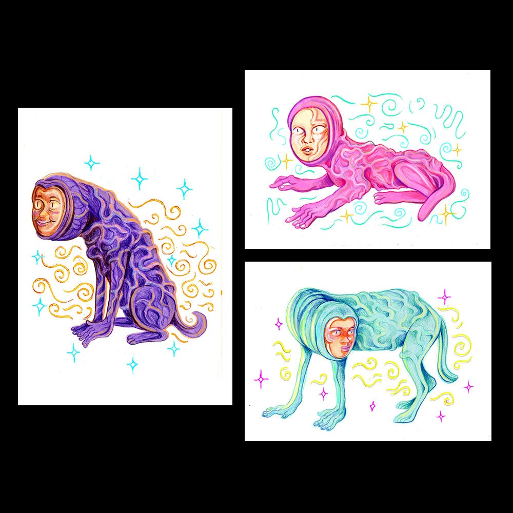 Image of Blindenhund Postcard Pack