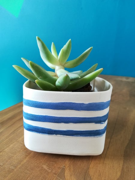 Image of Square Succulent Pot (Coastal)