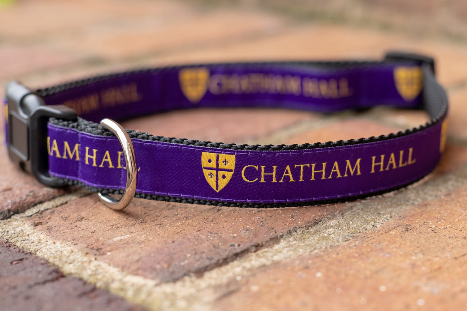 Image of Chatham Hall Dog Collars