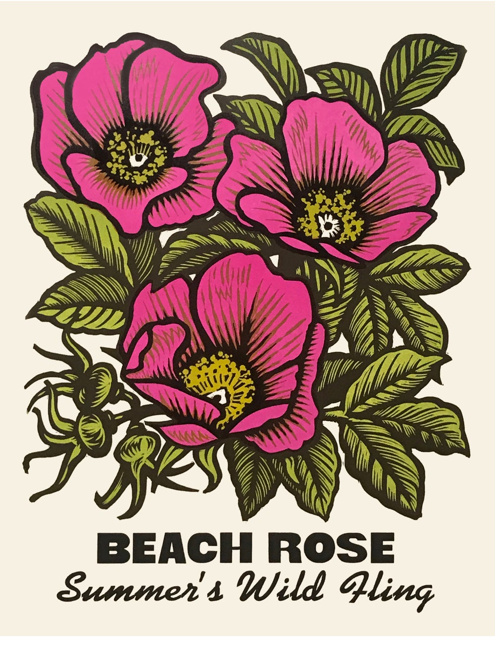 Image of Beach Rose