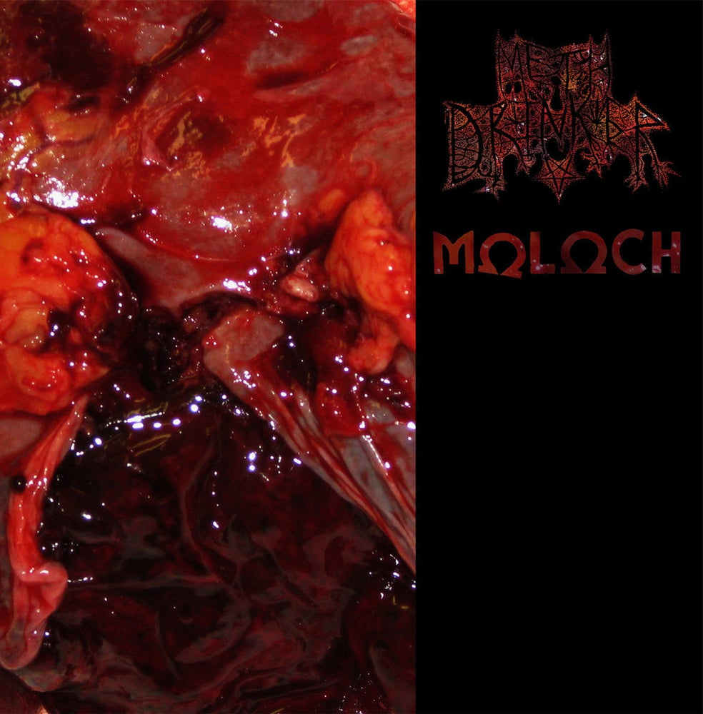 Image of Meth Drinker / Moloch - Split CS