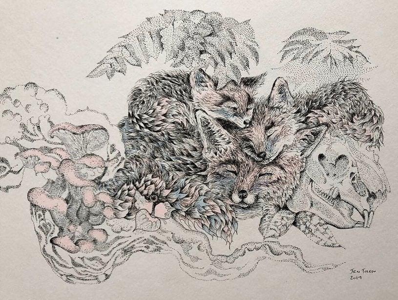 Image of Fox Mama, Cubs, Rabbit Skull & Ferns