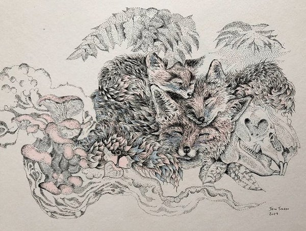 Image of Fox Mama, Cubs, Rabbit Skull & Ferns