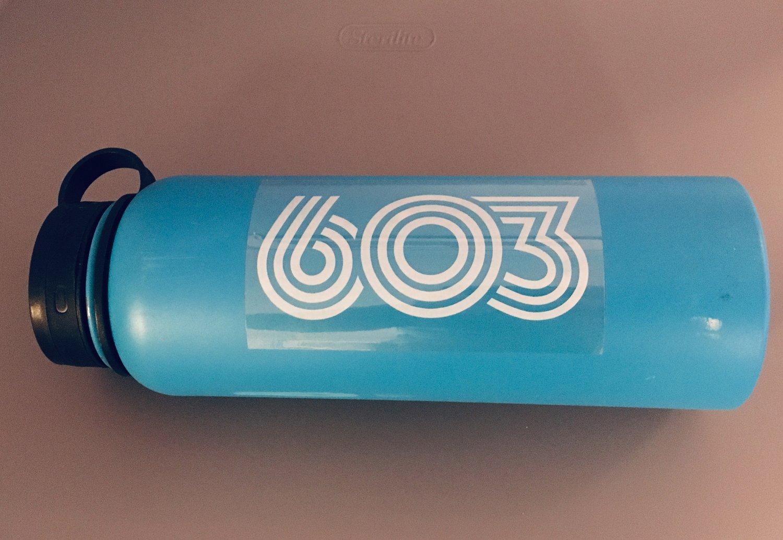 Image of Retro 603  vinyl sticker