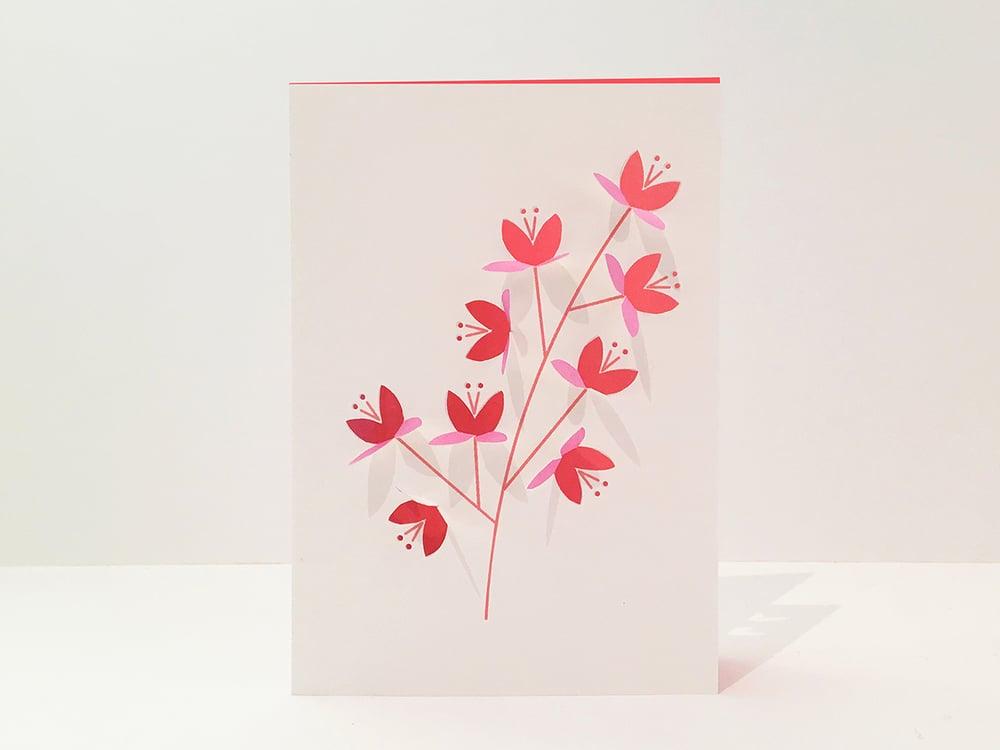 Image of 2x Blossom