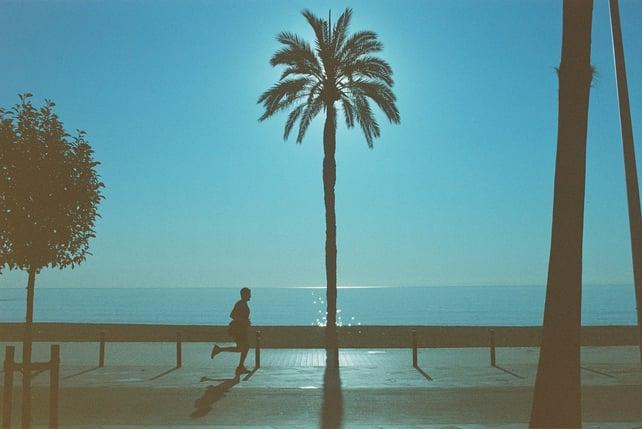 Image of dubblefilm Pacific