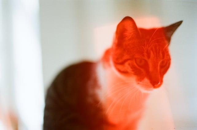 Image of dubblefilm Solar