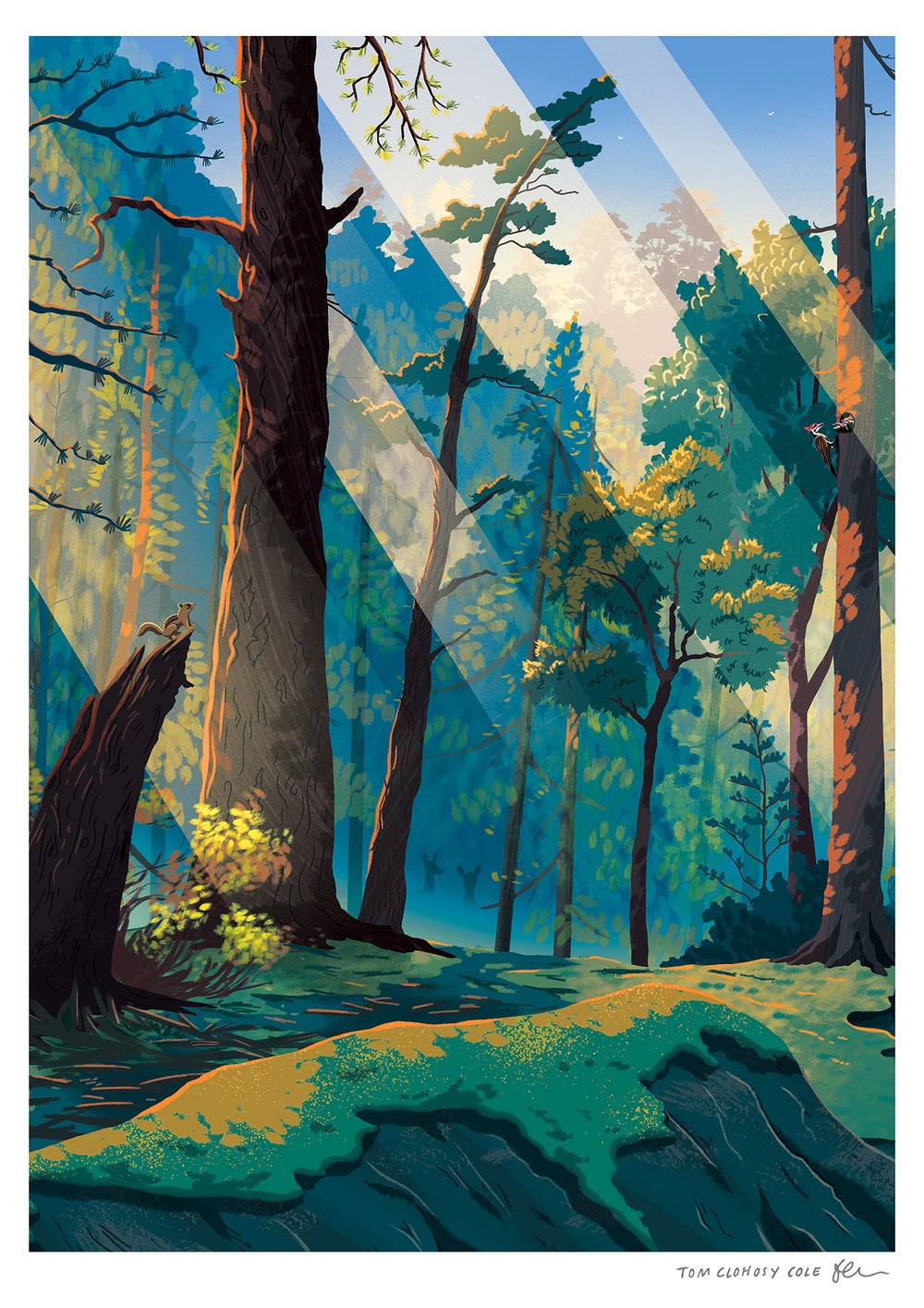 Image of Woodlands Print