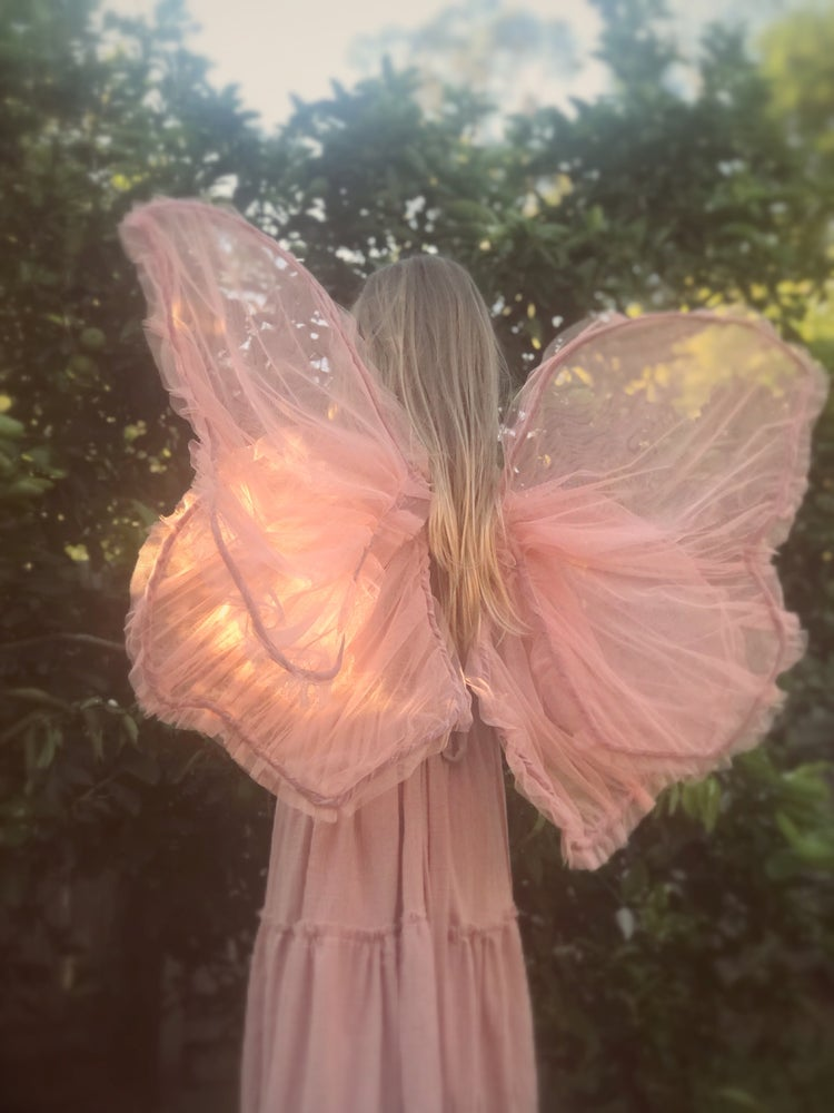 Image of 'almond blossom' sheer fairy wings | rose