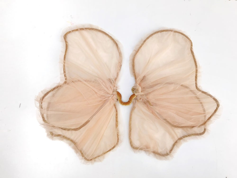 Image of 'almond blossom' sheer fairy wings | natural