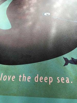 ♡ love the deep sea ♡