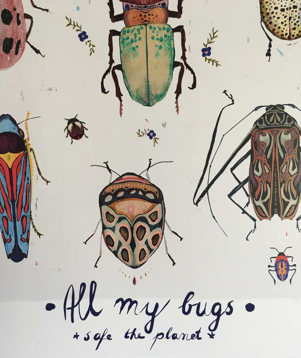 Image of All my bugs - safe the planet