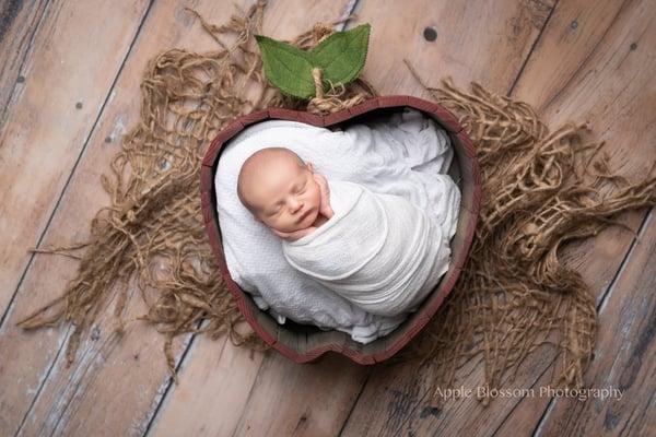 Image of Newborn Apple, Wood Apple, Apple Bowl, Apple Photography Prop, Red Apple Prop, Apple Prop