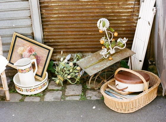 Image of paris flea
