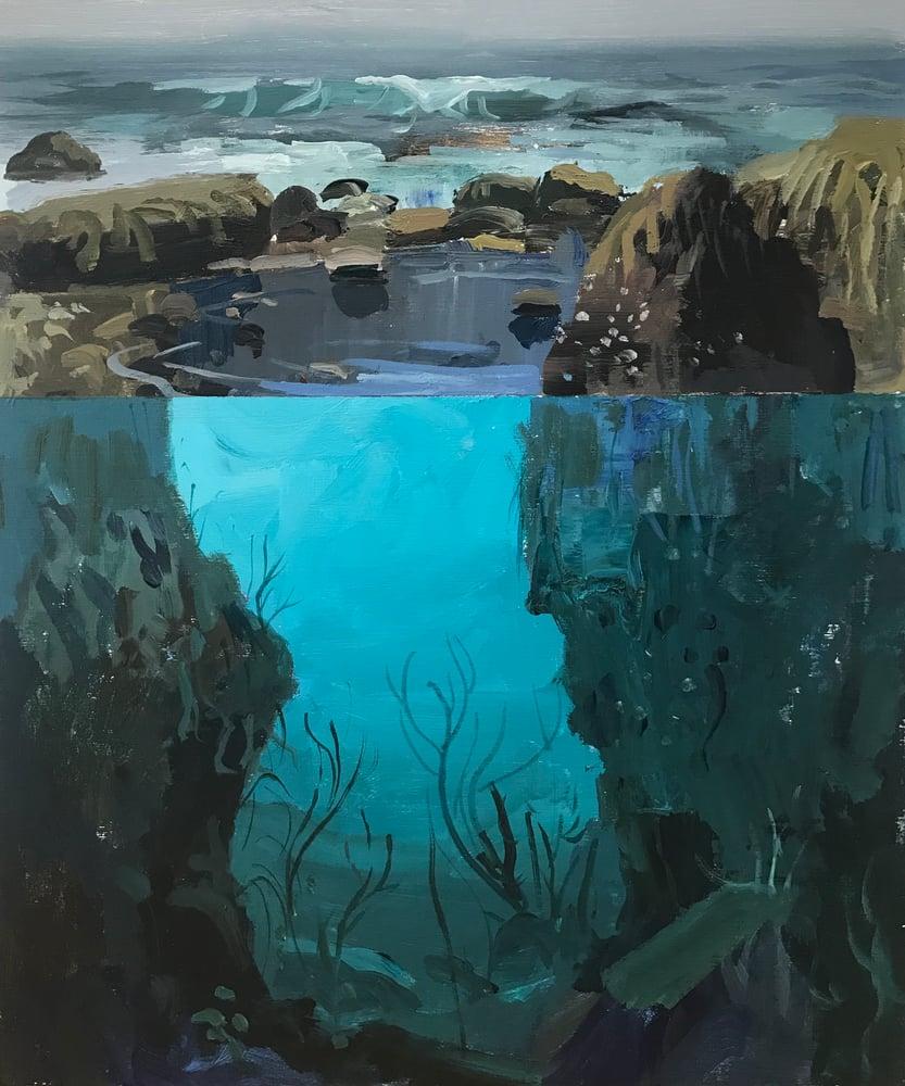 Image of Tide Pool study No 4