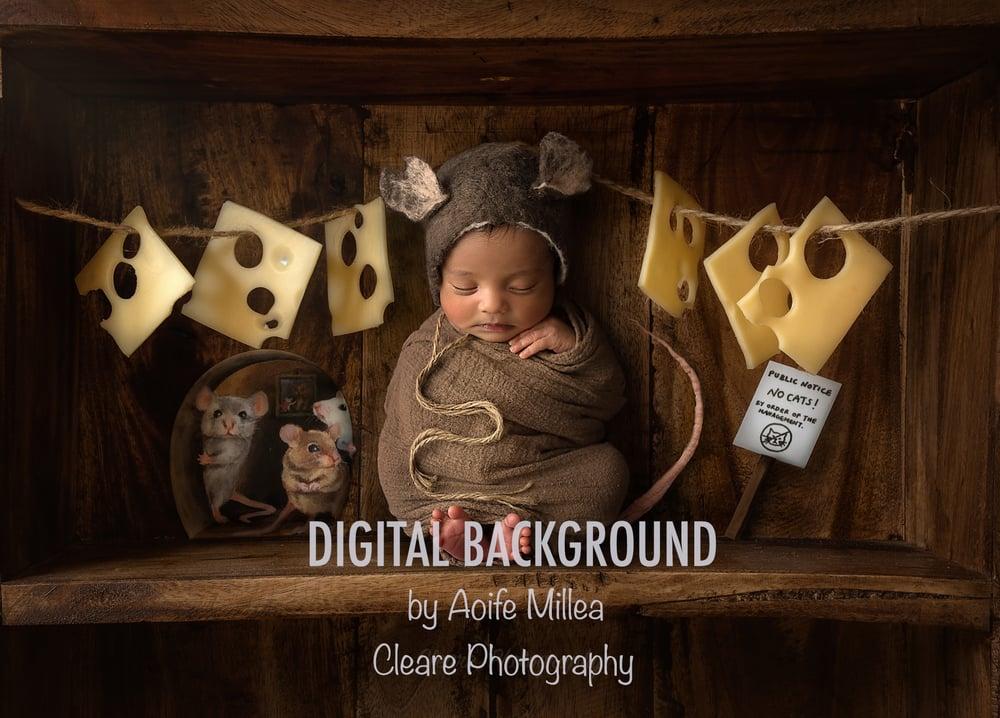 Image of newborn mouse shelf , regular jpeg digital backdrop (no layers)