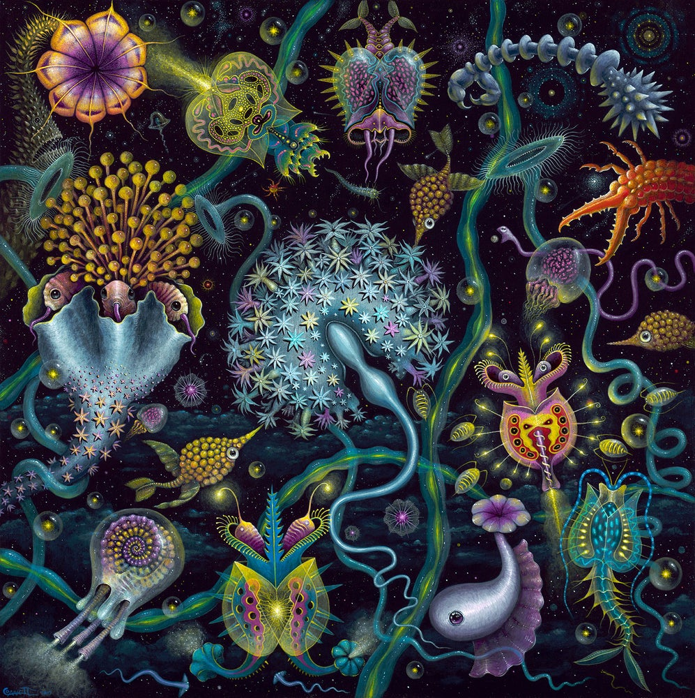 "Image of SPACE PLANKTON ~ 18 X 18"" Signed & Numbered Limited Edition"
