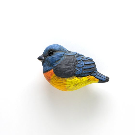 Image of Blue and Yellow Tanager