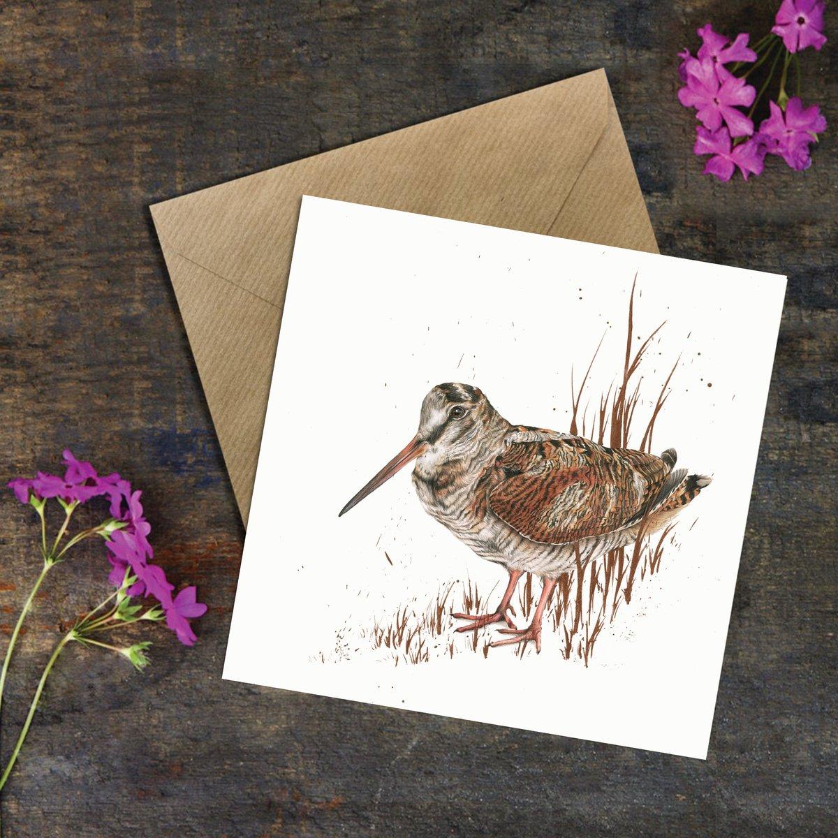 Image of 'Woodcock' Greeting Card