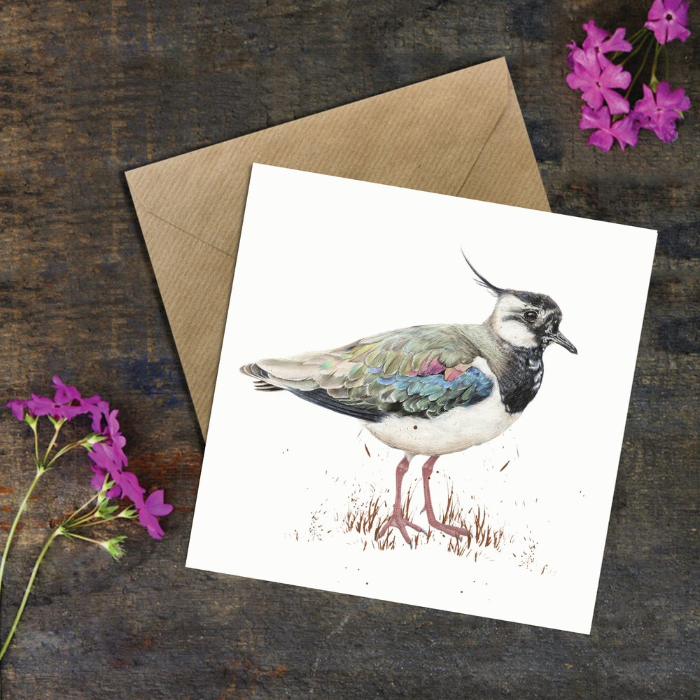 Image of 'Lapwing' Greeting Card