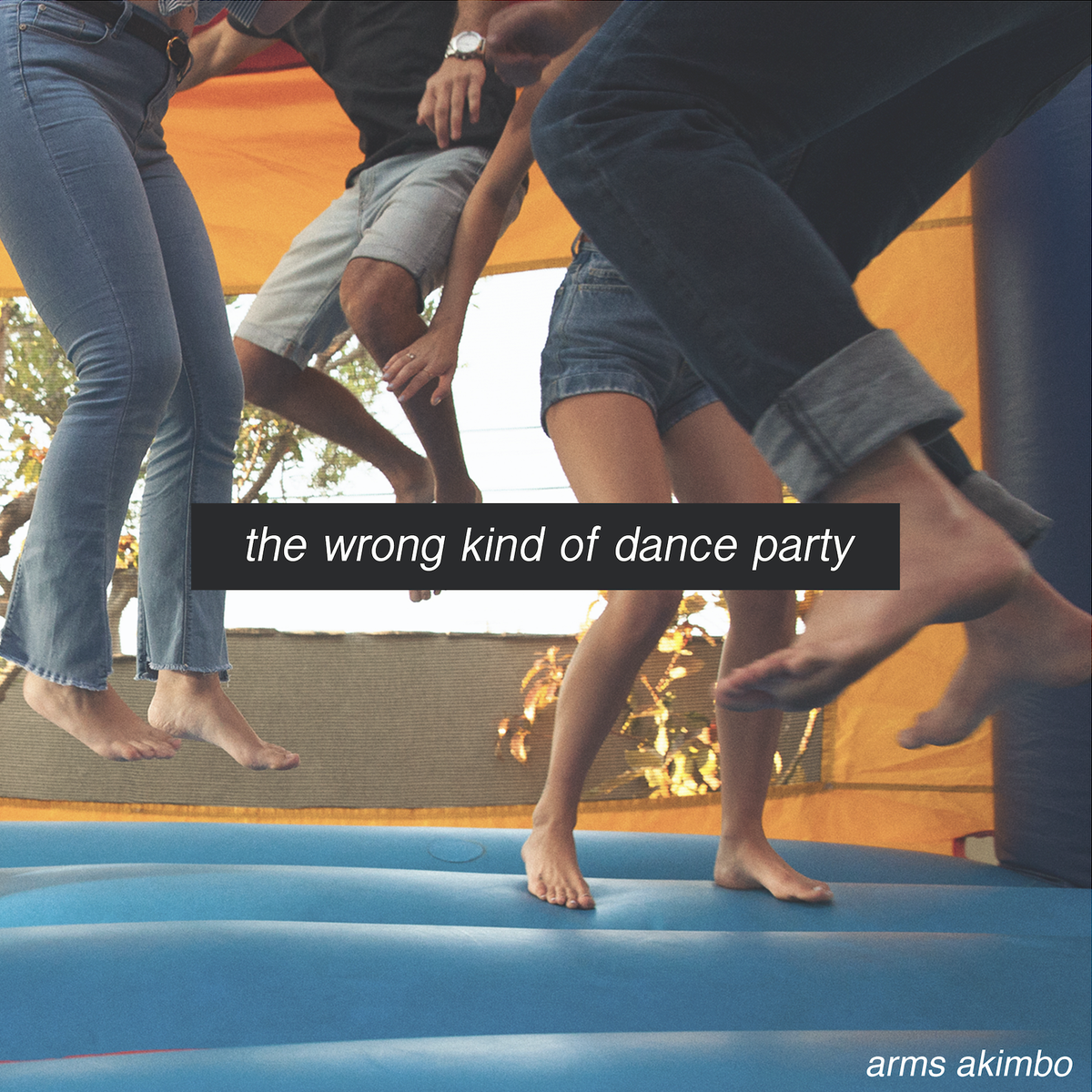 Image of THE WRONG KIND OF DANCE PARTY (COMPACT DISC)