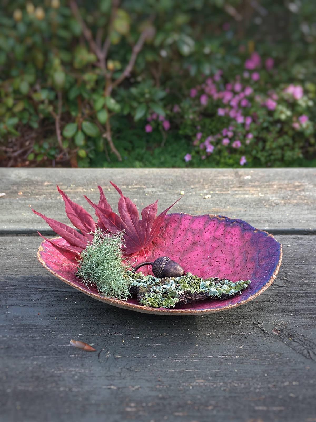 Image of Dish; Algae Bloom