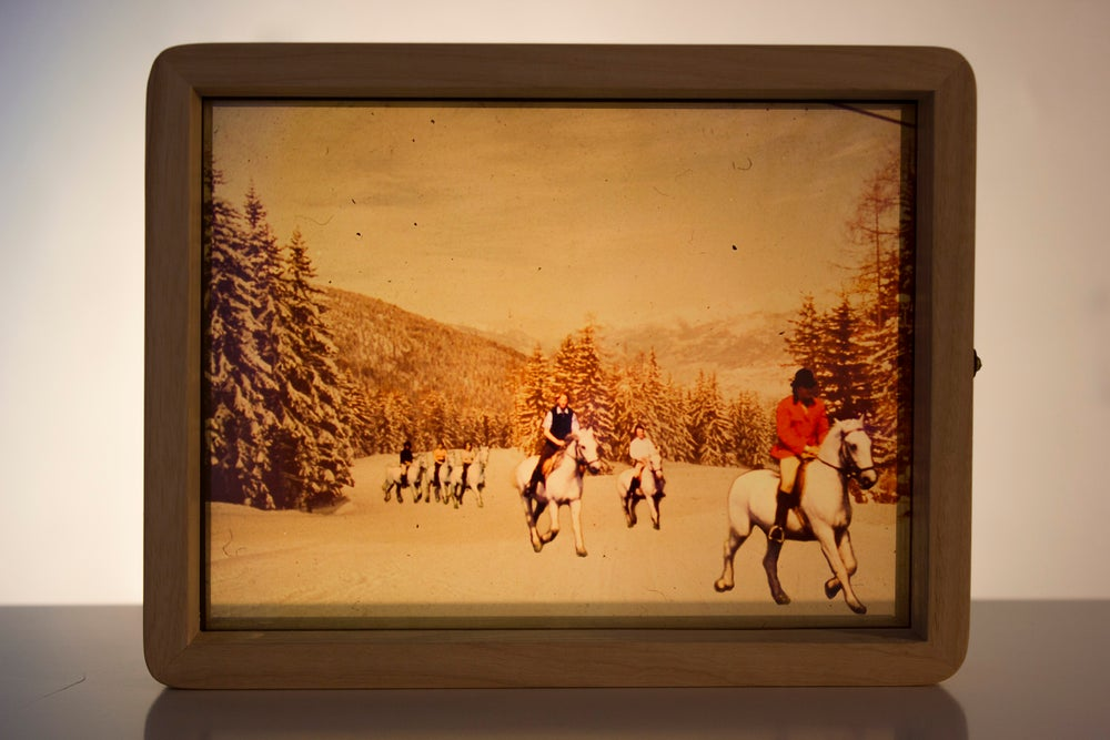 Image of Horses in the Snow
