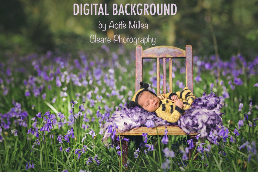Image of digital background , small vintage chair in bluebells (no layers)