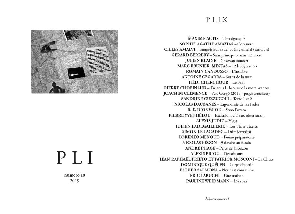 Image of PLI 10