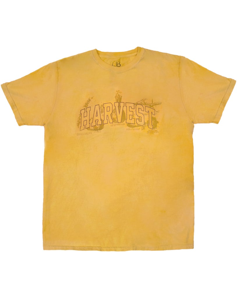 Image of 'Harvest' T-Shirt