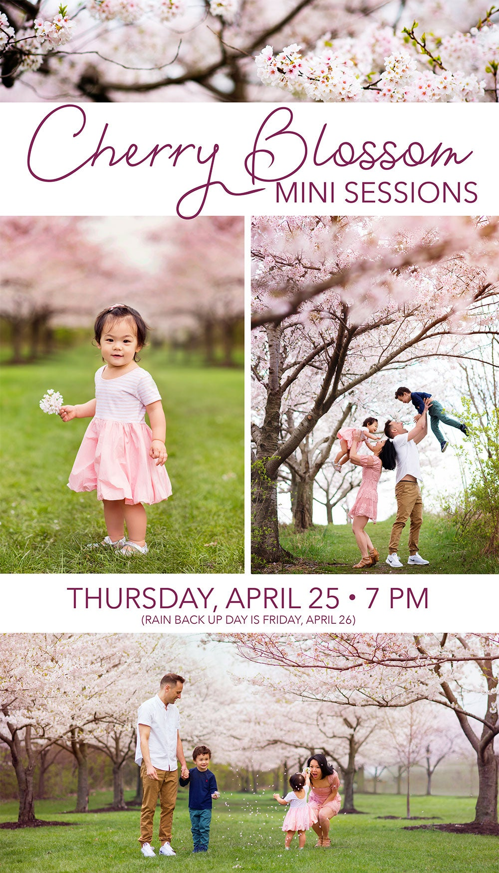 Image of CHERRY BLOSSOM MINI SESSIONS