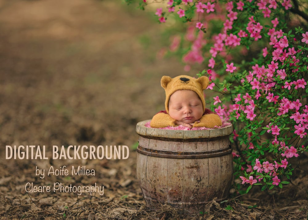 Image of newborn digital backdrop, vintage bucket and pink flowers