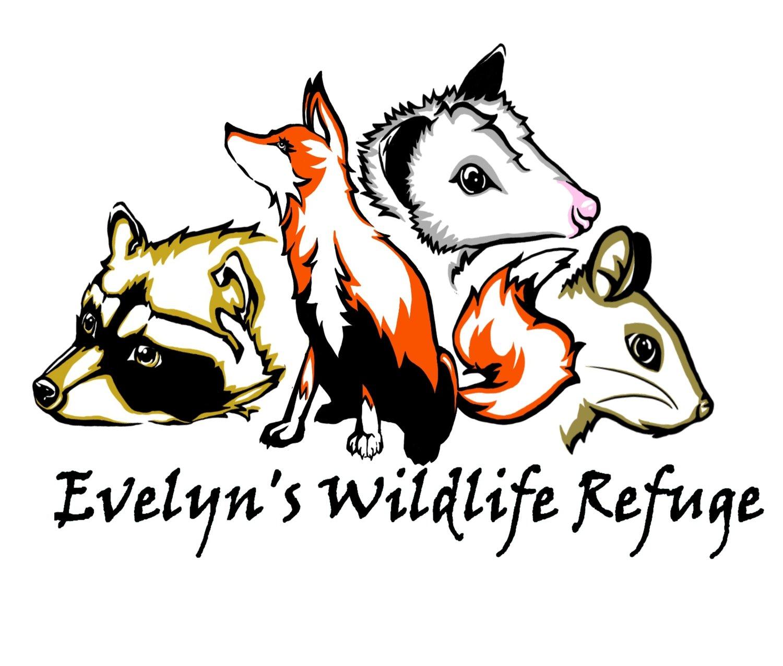 "Image of ""EVELYNS WILDLIFE REFUGE"" GROUND CUSTOM DARK OR MEDIUM"