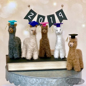 Image of Alpaca Graduate Miniature Needle Felted Mini Alpaca Fiber Teacher Professor Graduation Gift