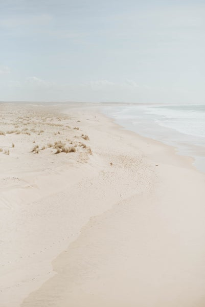 Image of Par delà les dunes