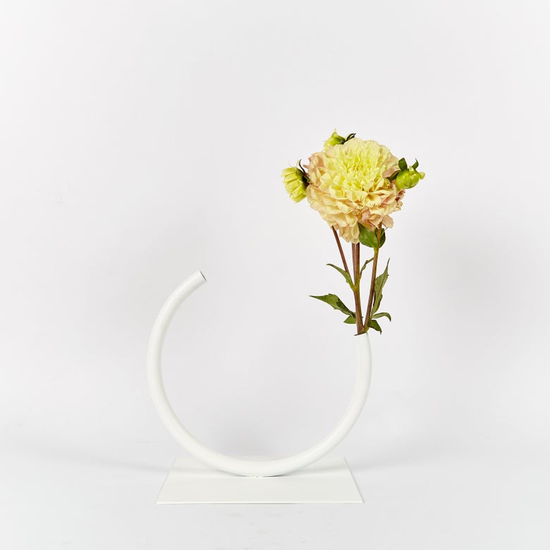 Image of Small, WHITE Edging Over Vase