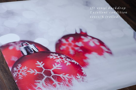 Image of  Vinyl Backdrop- Christmas