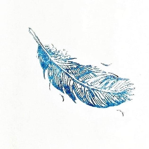 Image of HAWKS & DOVES