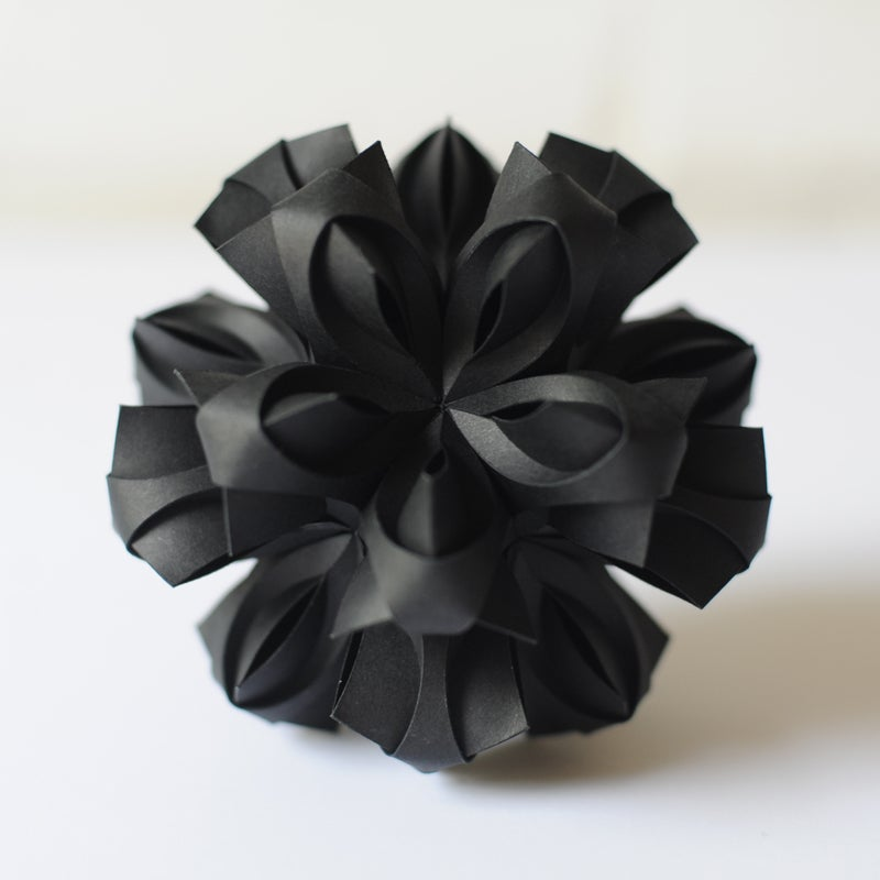 Image of Bloom