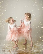 Image of Gold Glitter Minis ( Cream Backdrop)