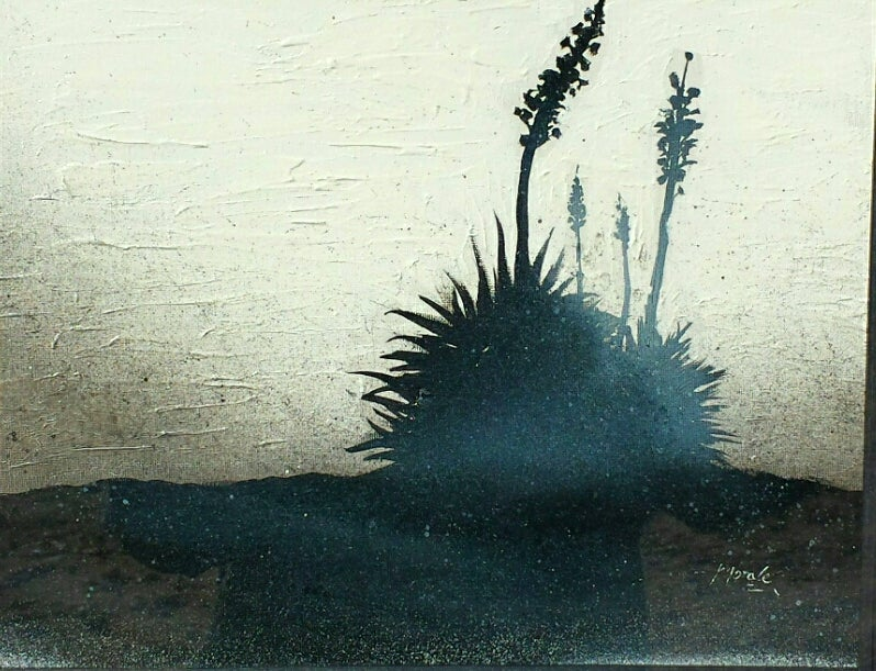Image of Desert Shadows