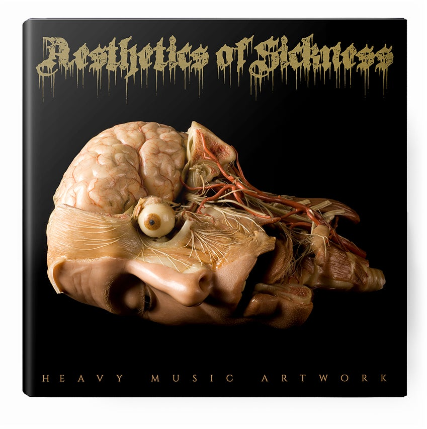 Image of Aesthetics of Sickness - The Gore Archetypes
