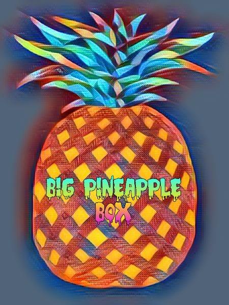 Image of Big Pineapple Box