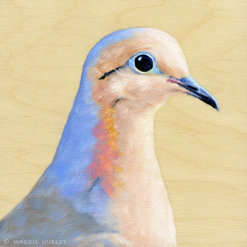 Image of Mourning Dove Bird Print on Wood by Maggie Hurley