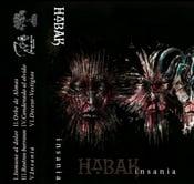 """Image of HABAK """"insania"""" cassette (Scythe - 076)"""