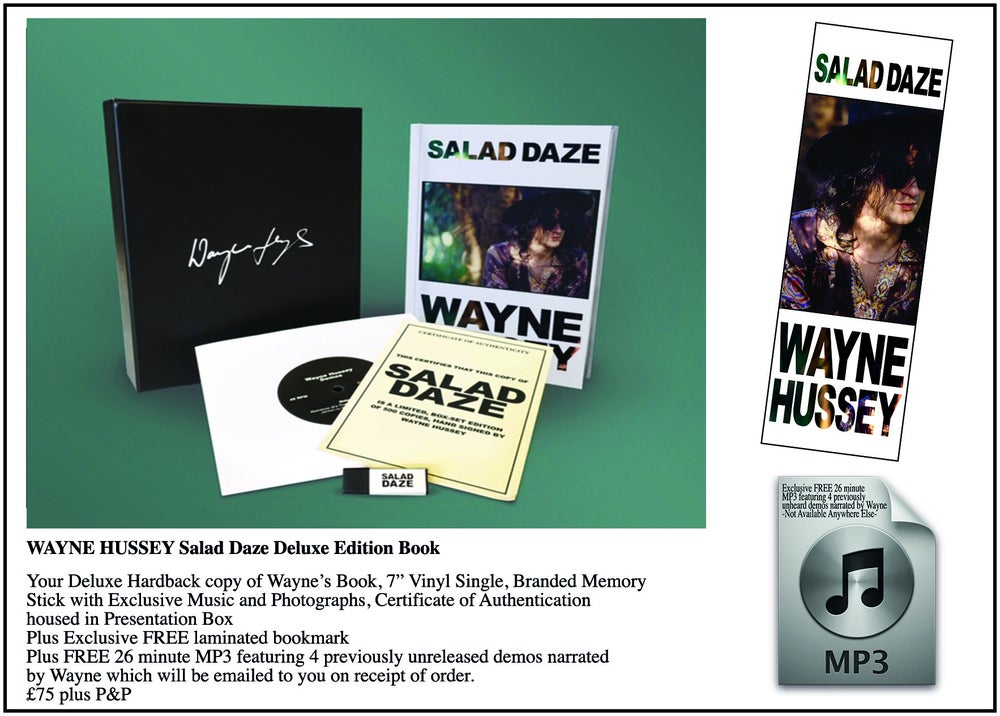 Image of WAYNE HUSSEY Salad Daze - Deluxe Edition Book - Webstore Exclusive
