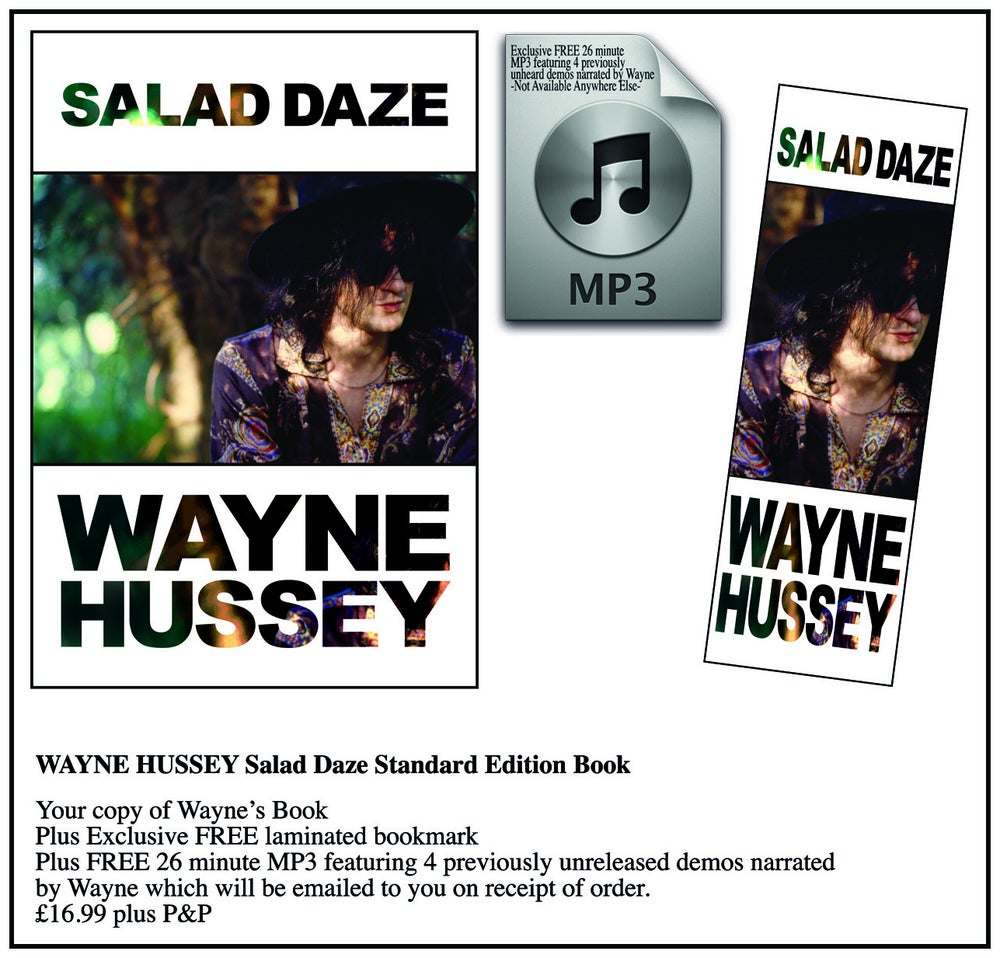 Image of WAYNE HUSSEY Salad Daze Book - Standard Edition